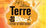 terre-de-blues-2013