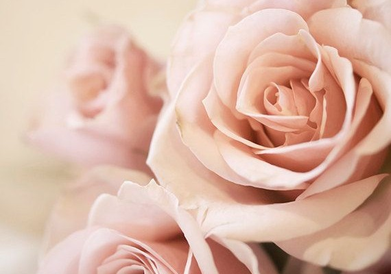 Recette DIY : fabriquez votre eau de rose maison