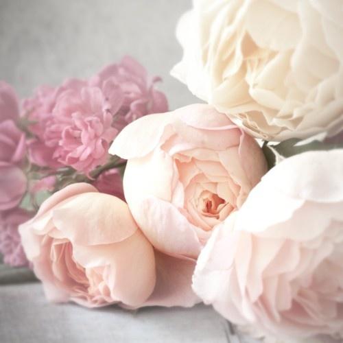 recette-eau-de-rose-diy