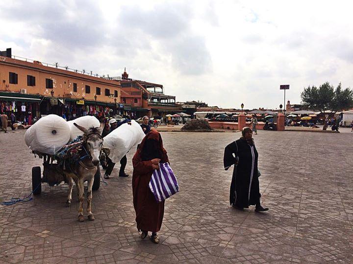 bonnes-adresses-marrakech-place-jemaa-el-fna1
