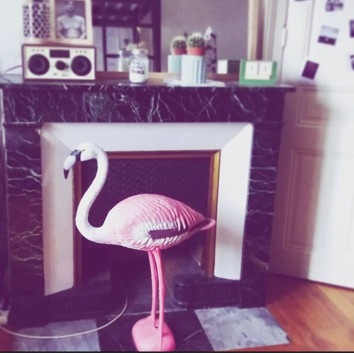 flamingo.jpeg