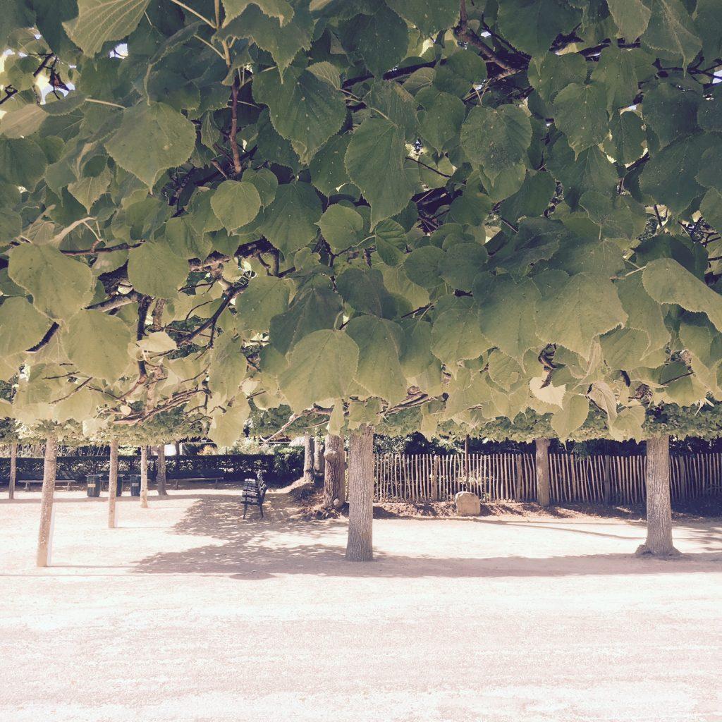 week-end-poitiers-vienne14