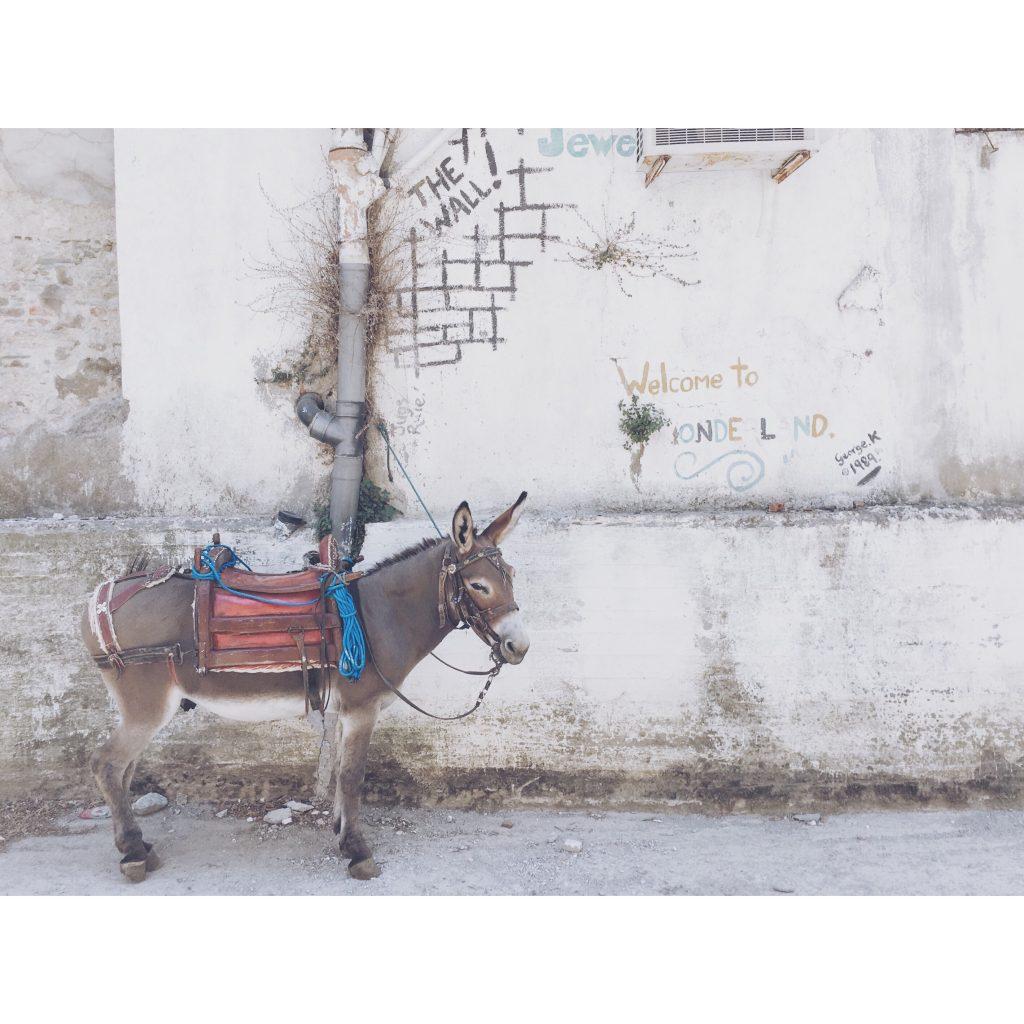 grece-lesvos-ane-mur-graffitis
