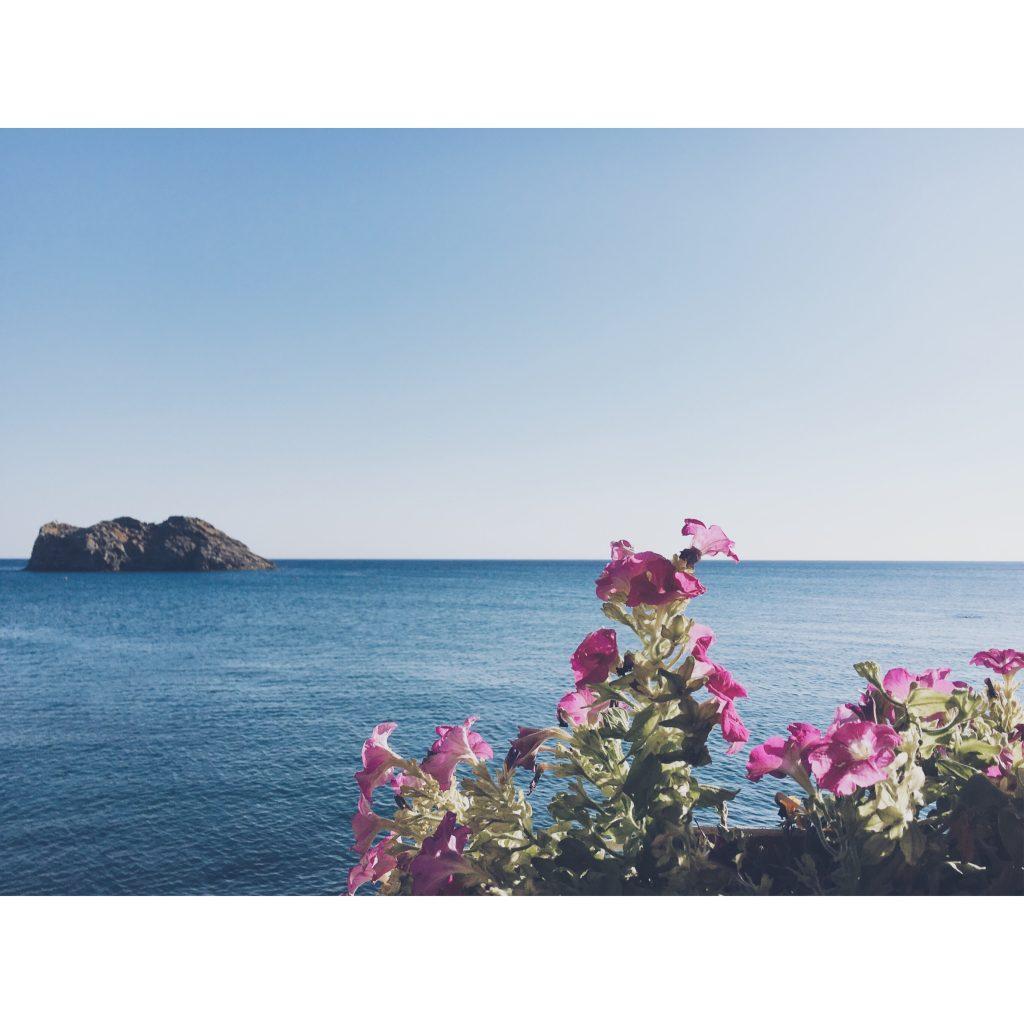 grece-lesvos-rocher-fleurs-bleu-rose